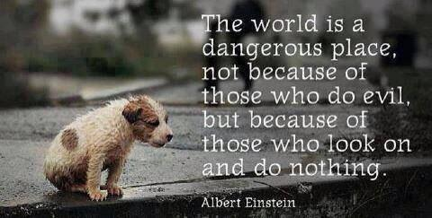 """The world is a dangerous place, not because of those who do evil, but because of those who look on and do nothing."" - Albert Einstein"